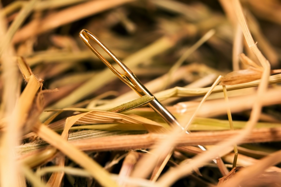 Outliers: Looking For A Needle In A Haystack